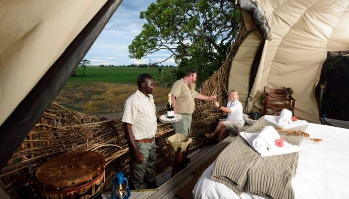 Eco-friendly safari, Green Safaris, Chisa Busanga Camp, Chisa Nest, Busanga Plains, Kafue Safari
