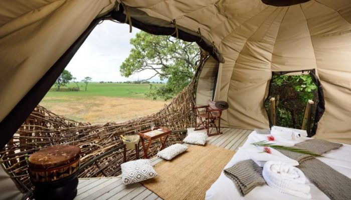 Green Safaris, Chisa Busanga Camp, Chisa Nest, Busanga Plains, Kafue Safari
