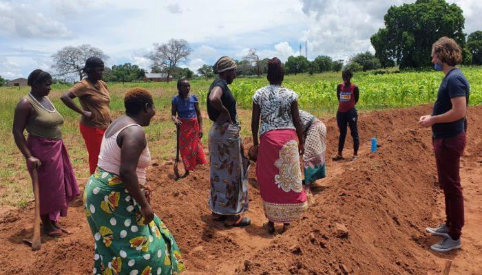 Women preparing soil for planting crops in Mukuni farm by Tongabezi